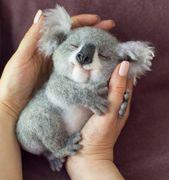 Bonito koala de lana. #needlefelting #woolfelt #needlefeltedanimals #cuteanimals   – Cute Animals / Pets (Dogs, Cats, Mice, Hamsters, Birds,etc.) / Adorable Children Of Mother Nature