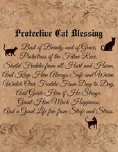 Custom Cat Familiar Blessing Spell Digital Download Book of Shadows Pages – Wiccan – Witch – Spells – BOS – Familiar Spell Ritual Blessing  – Symbolic signs