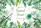 Tropical Forest. , #Ad, #handpainted#quality#collection#watercolor #Ad