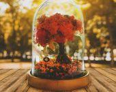 Photo of Weihnachtsterrarium-Kit, Glaskuppel mit Lichterketten, Weihnachtsschmuck, Weihnachtsgeschenke,