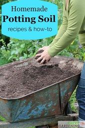 DIY Potting Soil: 6 Home made Potting Combine Recipes for the Backyard