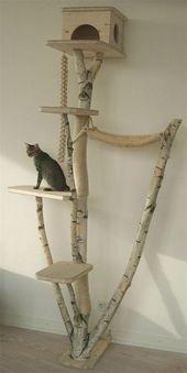 20+ Die beliebtesten Katzenbaum-Ideen, die Sie lieben werden