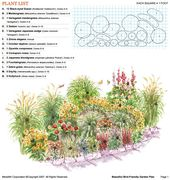 Wild Garden Diagram with Ornamental Grasses and Flowers for Birds & Butterflies Summer and Fall – garden