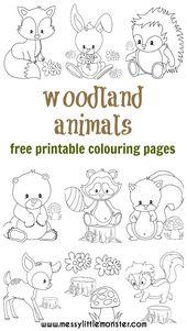 Woodland Animal Colouring Pages – #Animal #Colouri…