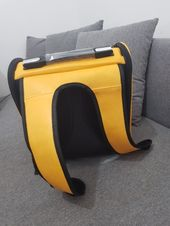 Lovely Bag for cats and canines Journey accomplice