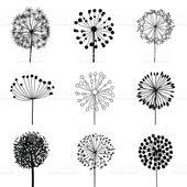 Floral Parts for design, dandelions. EPS10 Vector illustration