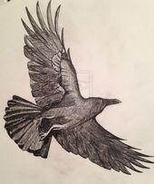 crows flying drawing google search crows pinterest crows crows ravens and drawing lessons
