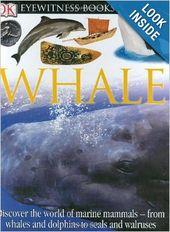 Whale Dk Eyewitness Book Ocean Animals Whale Animal Magazines