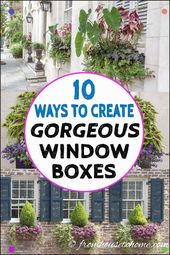 I Love These Window Field Concepts Some Of The Flower Packing containers Are For Full Solar And Some…