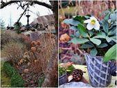 Hof 9: Ice-Light DIY und der Garten im Januar   – dekoration – #Dekoration #der …