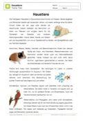 Arbeitsblatt Lesetext Haustiere Mit Fragen Haustiere
