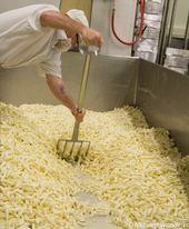 Milton Creamery Award Winning Artisan Cheese Midwest Wanderer Artisan Cheese Creamery Amish Farm