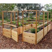 Leben im Freien Heute 12 ft x 8 ft Hobbygewächshaus – DIY Garden Beds !