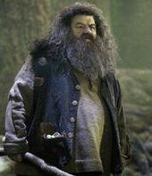 Rubeus Hagrid Harry Potter Wiki Harry Potter Films Harry James Potter