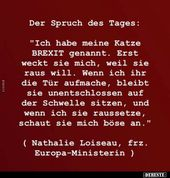 (notitle) – Funny Quotes and other Quotes – German Part 12