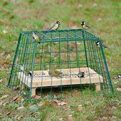 Jaula protectora Maxi para los que comen tierra, para que los gatos y las aves de rapiña no puedan escapar …   – Sammlung Tiere im Garten