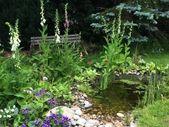 7 kuriose Gartentricks, die funktionieren. 7 ungewöhnliche Anbaumethoden und Garten …   – Garten