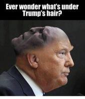 Memes von LOL IRL # 6. TOT. KOMMT, UM EINEN NEUEN LINK ZU ERHALTEN – Seite 245   – Makes me laugh