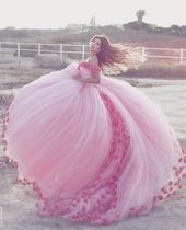 Modest Quinceanera Gown,Pink Ball Robe,Floral Promenade Gown,Vogue Promenade Gown,Horny Get together Gown, New Model Night Gown