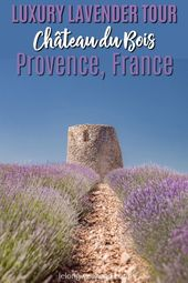 Luxurious Lavender Tour in Provence, France – Le Château du Bois Lavender Farm