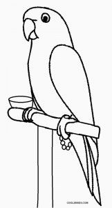 Coloring Pages. Birds. Little Cute Parrot Sits On The Branch ... | 300x162