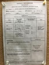 Buzz Aldrin S Customs Declaration Form Showing Moon Rocks And Samples Www Gala Galactic Stone Buzz Aldrin S Customs Declara In 2020 Moon Rock Buzz Aldrin Moon