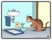 Fun Blechschilder – Unsere Katze – Katzen