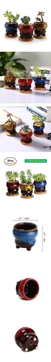 "Photo of T4U 2,5 ""Keramik Fambe Stativ Sukkulenten Kaktus Pflanzer Topf Set mit kostenlosen Bambus Tablett Vollfarb Set"
