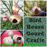 Birdhouse Gourd Craf