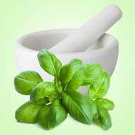 Fresh Basil Fragranc