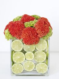 Fruit + Flower Cube: