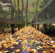 bridge with fall fol