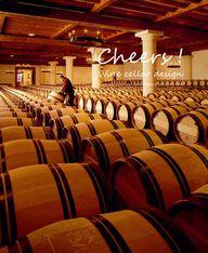 Cheers! Wine Cellar