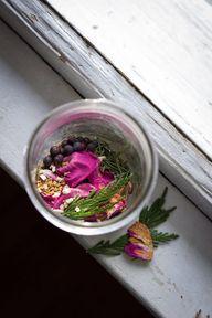 Mentally Uplifting - and Ever Evolving - Cedar Rose Rosemary Tea - Celia Linnemann