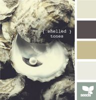 shelled tones - Colo
