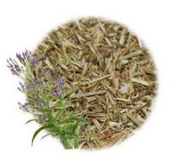 Blue Vervain Cut & S