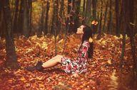 Fall Foliage Map Gui