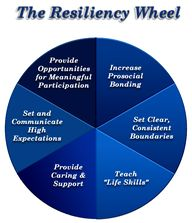 Resiliency Wheel: He