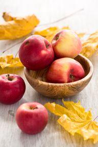 autumn red apples an
