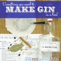 Make Your Own Gin Ki