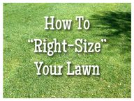 How To Right-Size Yo