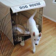 Canvas Dog Crate Cov