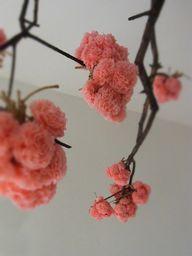 Pom poms for manzanita branches