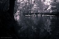 Kayakers in the Chan
