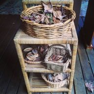 Autumn loose parts i