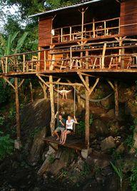 The Tree House Poste