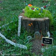 As promised, here are some more photos of our magical Fairy Garden Gnome Home that is made in a hollowed out tree stump. Please sign up to receive delightful Fairy Garden tips and special features… BONUS : subscribers go into the monthly draw to win special gifts from The Magic Onions Shop. Email Address If you want to read more...click here