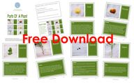 FREE DOWNLOAD – Mont...