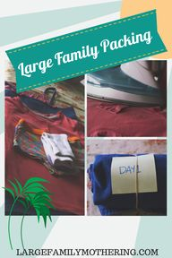 Large family travel: