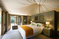 Hotels, Südafrikas, Luxus, Zimmern, Zelten, Sanbona, Wildife, Reserve,, Warmwaterberg, Mountains